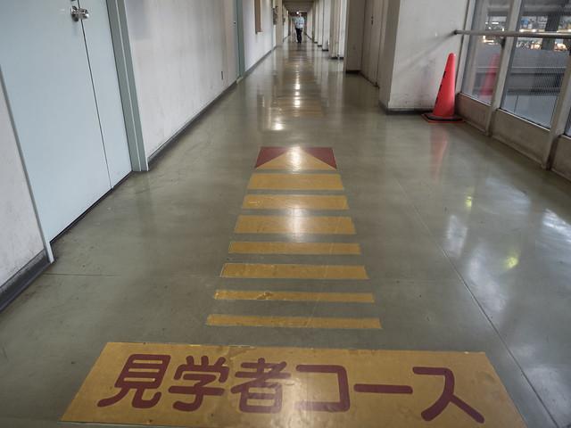 20170826_0028_大田市場見学.jpg