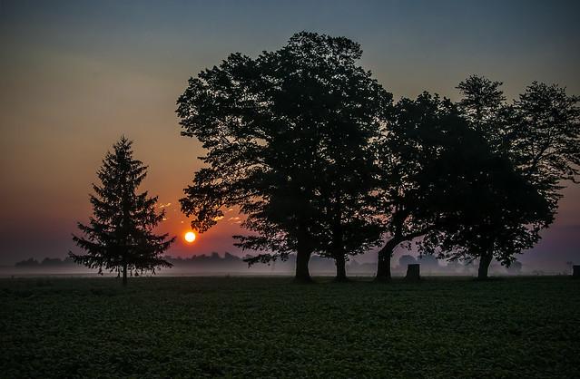 Dawn Colours
