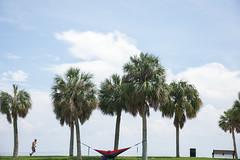 Vinoy Park St. Petersburg Florida