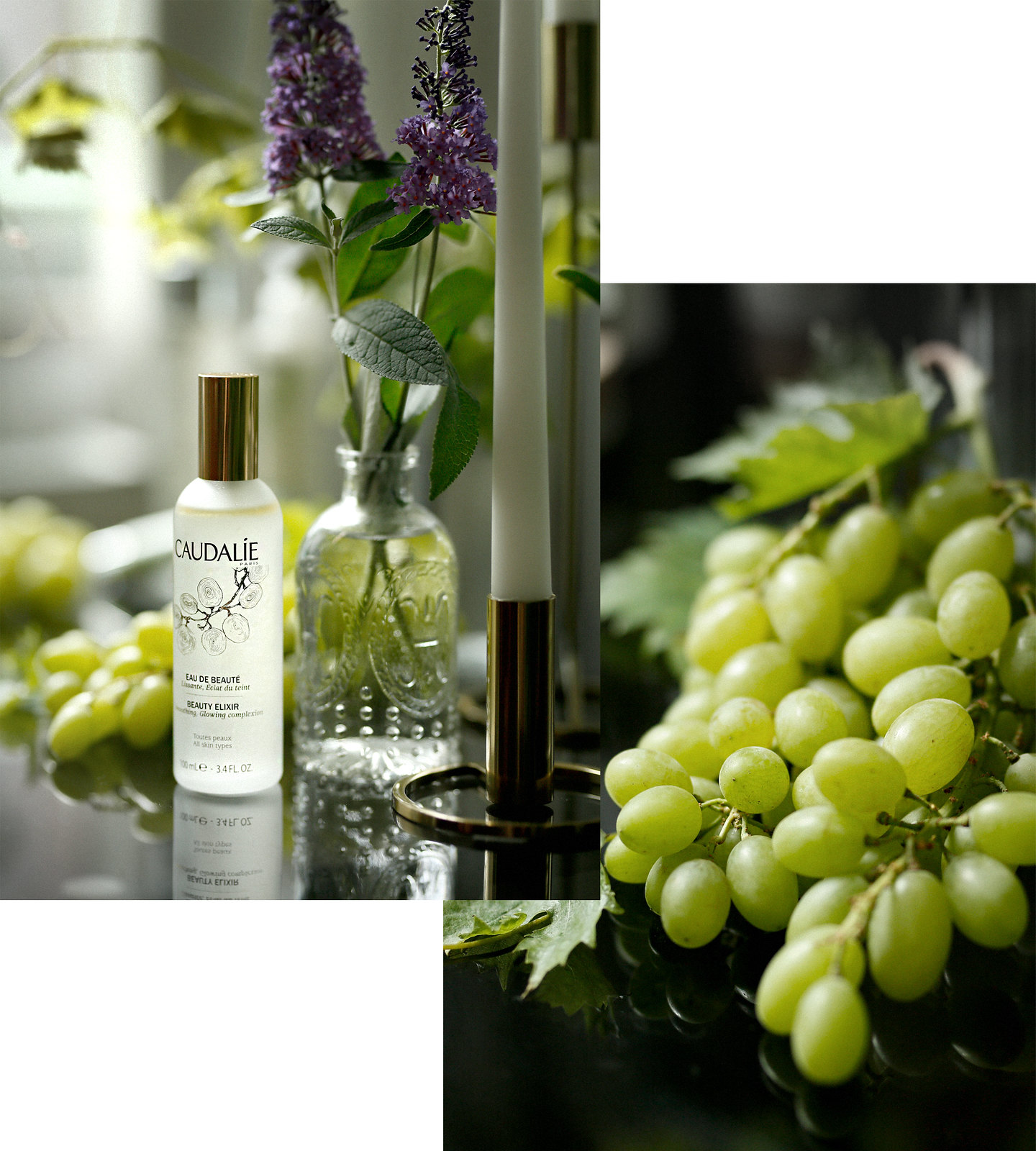caudalie eau de beauté beauty elixir french beauty wine grapes weintrauben vino vines nature cosmetics mist water spray rosie huntington campaign summer francaise beautyblogger germanblogger cats & dogs beautyblog ricarda schernus düsseldorf 5