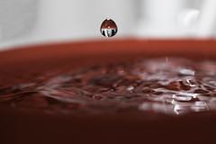35th Week - Water/Liquid Drip