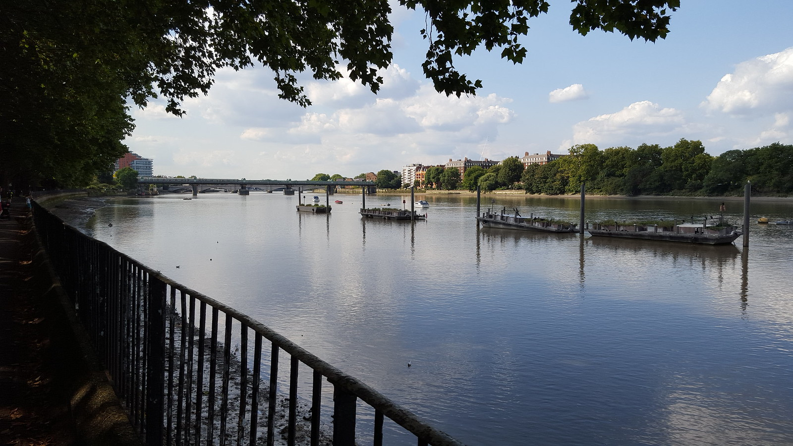 Colliers Wood to Putney Bridge