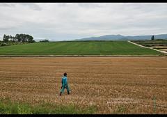 A farmer heading to inspect his crops, Biei, Hokkaido, Japan