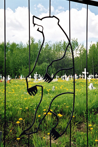A bear guards a small cemetery in the BC North