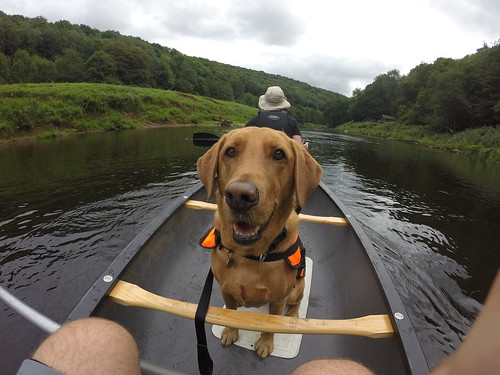 Molly canoeing 1-2