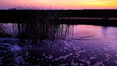 Sunset | Stevenson