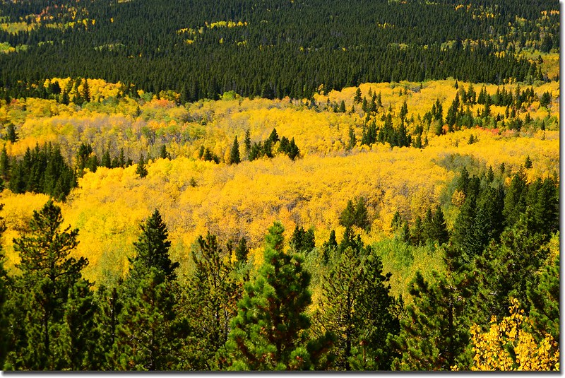 Peak to Peak Scenic Byway in Fall, Colorado (7)