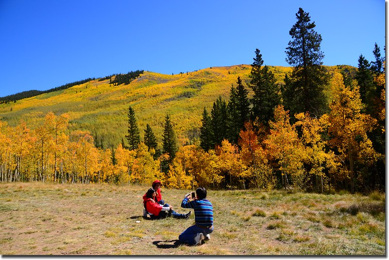 Fall colors, Kenosha Pass  (4)