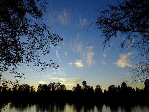 cirrus cloud sky