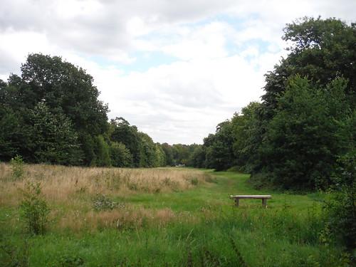 Bench with Long Vista towards Ornamental Pond
