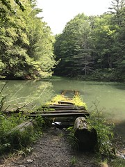 Monk's pond is gorgeous