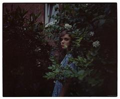 lady in veddel bushes