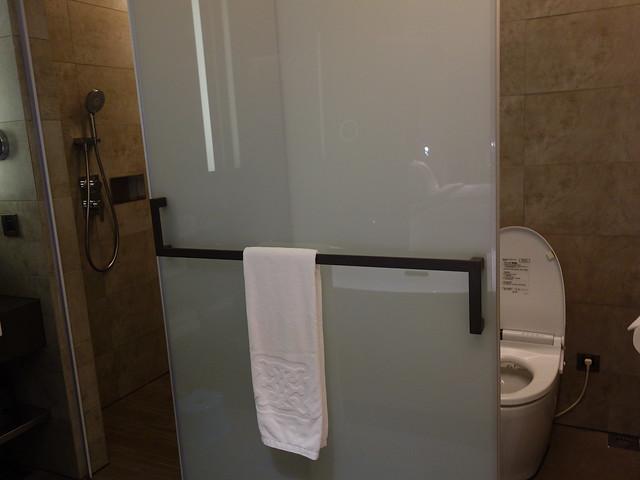 乾濕分離淋浴間與廁所共用門片@高雄喜達絲飯店