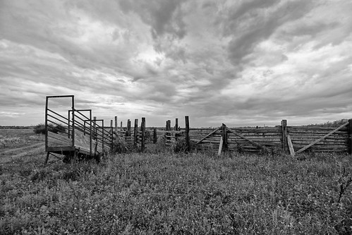 fence fencefridays hff blackandwhite corral ranch cameronranch