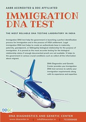 DDGC - Immigration Test
