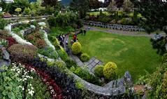 LPR - Sunken Gardens (19 of 19)