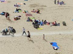 strand/beach/duinen/boulevard