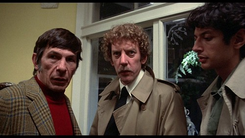 Invasion of the Body Snatchers - 1978 - screenshot 3