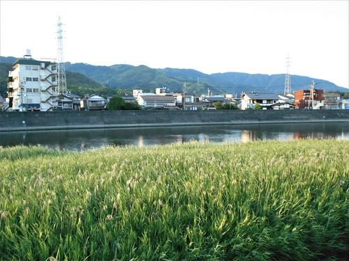 jp-kochi-arrivée (2)