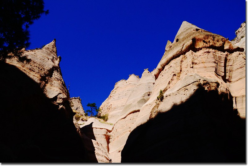 Unusual rock formations along the Slot Canyon Trail (7)