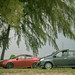 Cars under a Tree