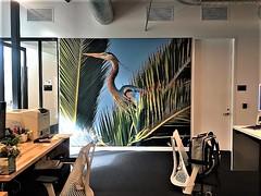 Walking Bolsa Chica photo now adornes Yahoo office wall :)