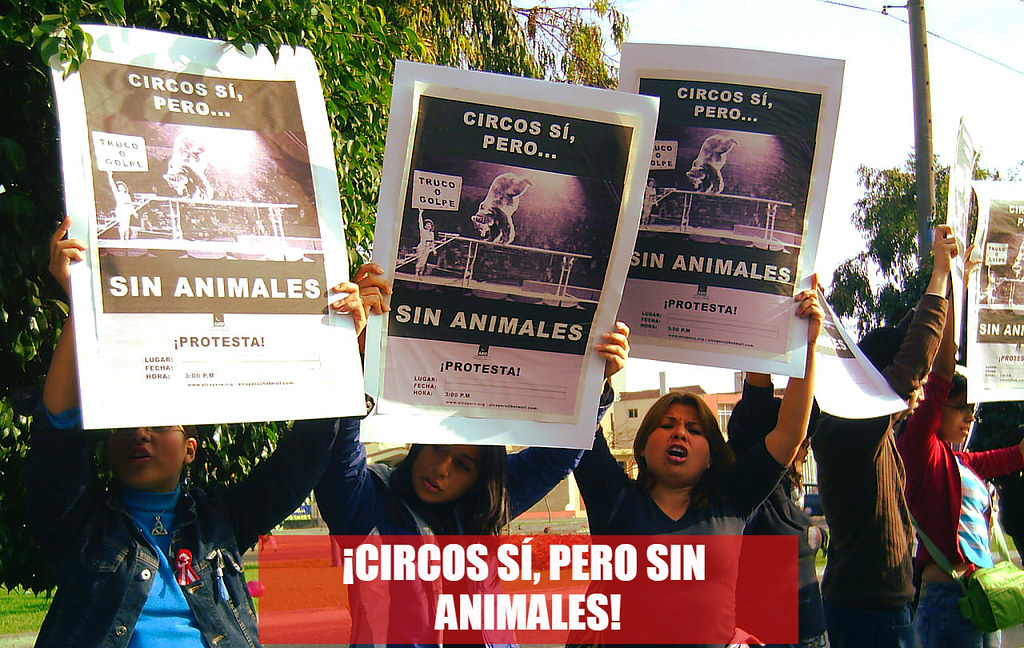 Afiche utilizado para las protestas del 2003, 2004 y 2005 organizadas por ALCO en Lima.