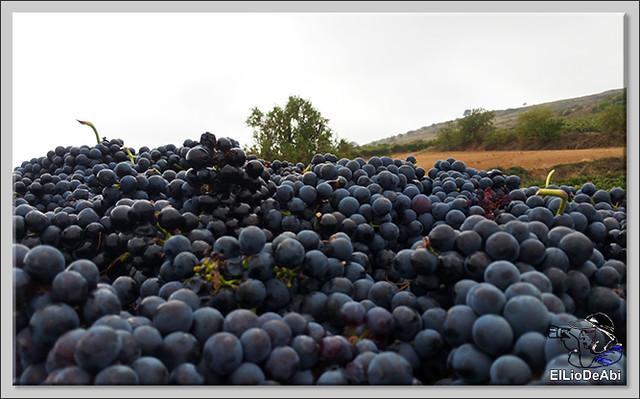 La Rioja siempre es un lugar dulce