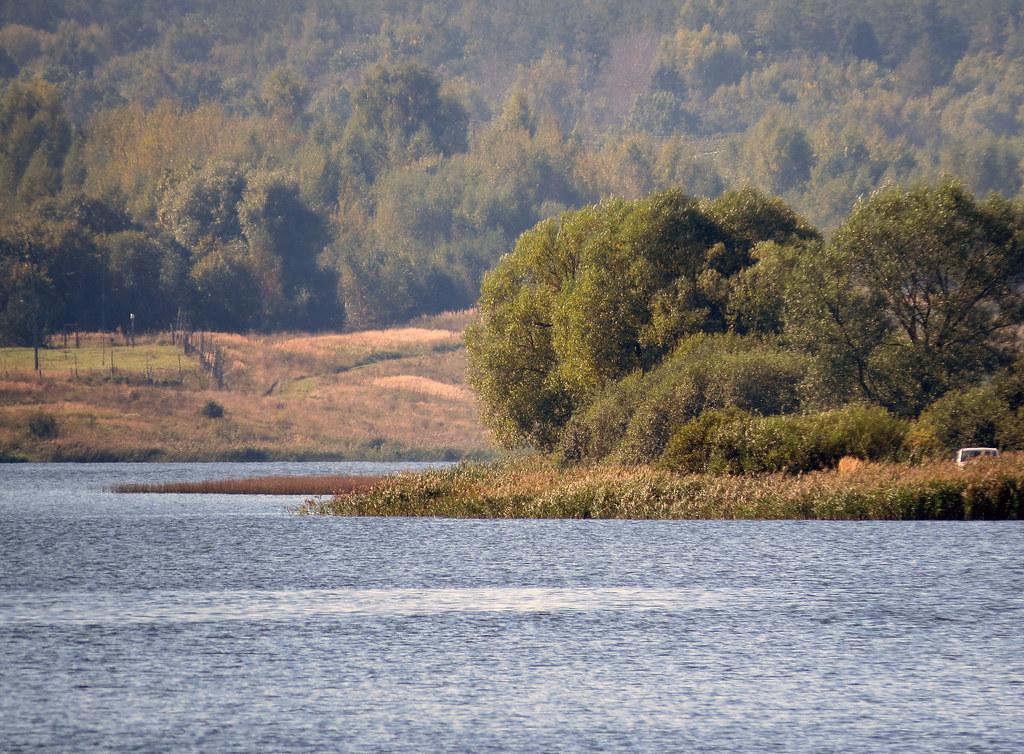 Егоровский лес