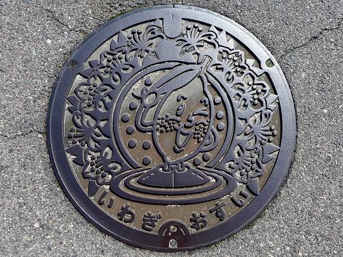 Iwagi Ehime, manhole cover (愛媛県岩城村のマンホール)