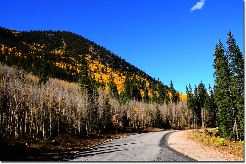 Fall colors, Guanella Pass, Colorado (38)