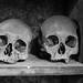 Skulls in the Crypt