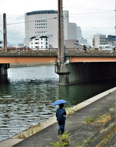 jp-kochi-rivière (3)