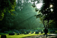 Late Afternoon in the Cemetery
