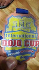 Международный турнир WKF «International Dojo Cup»47