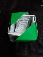 Kikuchi Masato's Octagonal Hyperbolic Paraboloid in a Cube