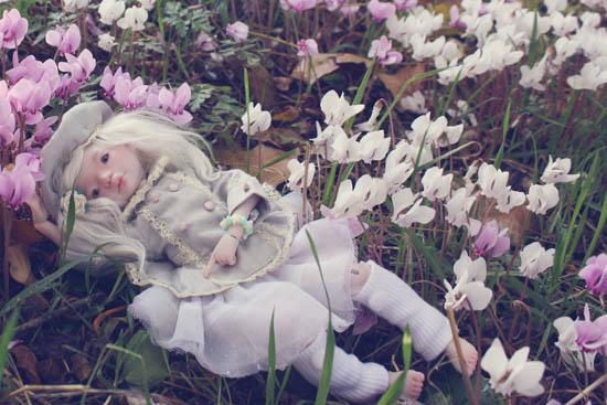 *Avant l'hiver* [Dust of doll Meel pink skin] p10 - Page 10 36428289323_3dda16d8f5_o