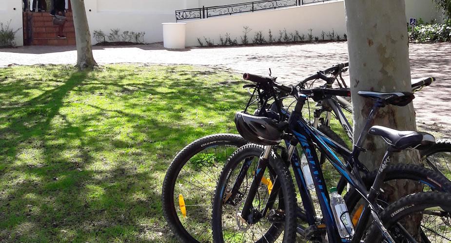 Ontdek de wijnvelden van Stellenbosch op de fiets | Mooistestedentrips.nl