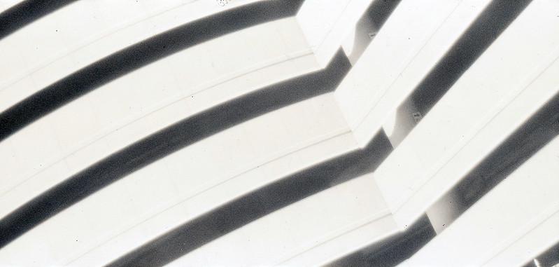 Polaroid Polagraph 6