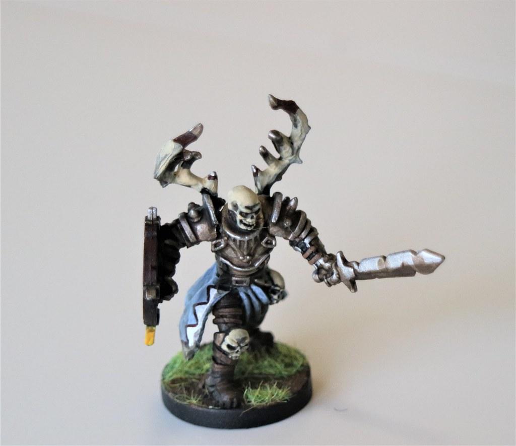 Runewars Miniatures Waiqar Warrior