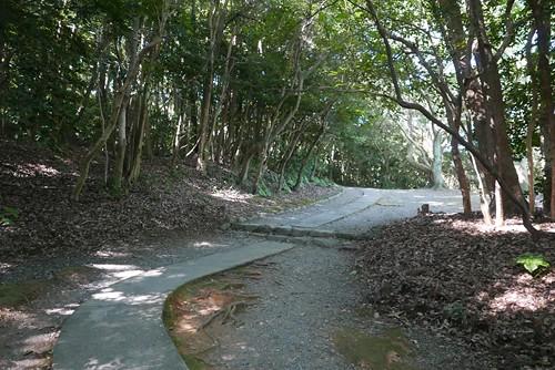 munakatataisha055