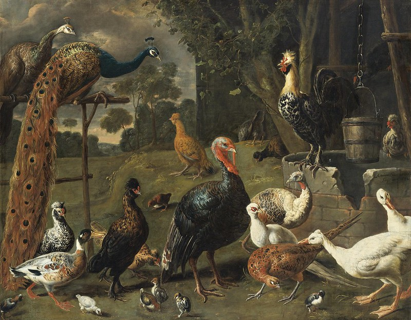 Adriaen van Utrecht - Peacock and peahen on a perch, turkeys, a pheasant and poultry by a well
