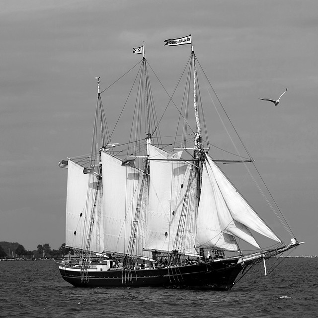 A Schooner Enters Milwaukee Bay