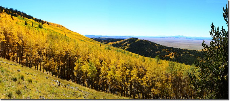 Fall colors, Kenosha Pass  (48)