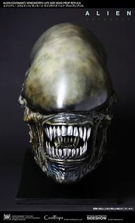 逼真到讓你嚇得屁滾尿流~~CoolProps 異形:聖約【異形】Alien: Covenant Xenomorph 1:1 比例頭像道具複製品