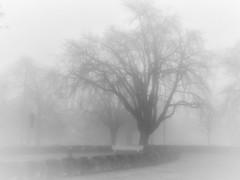 Misty Southampton