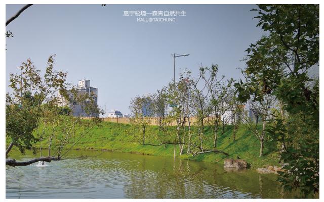 惠宇秘境森青自然共生and台中嘉明湖-8