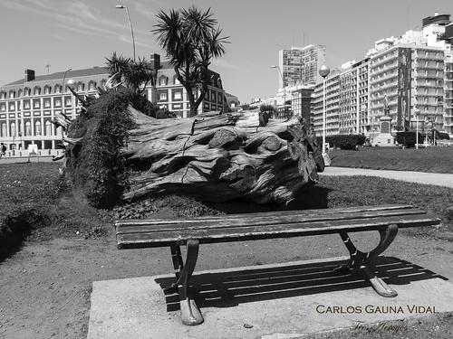 Autor: Carlos Gauna Vidal