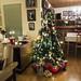 Christmas tree at Arne and Aslaug's place