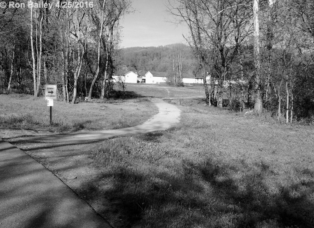 Bikepath Walk 4-24-16 47 BW